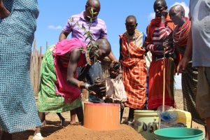 Maasai women plant trees